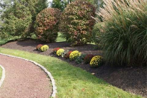 Park Landscaping and Plantings